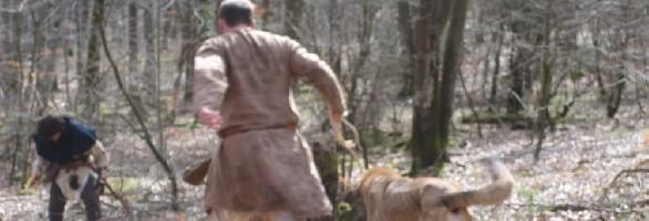 Arquero y perro